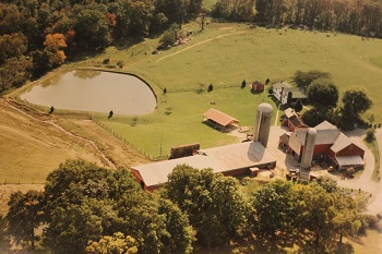 Pond View Farm