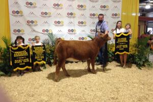 Pond View Farm Winning at State Fair